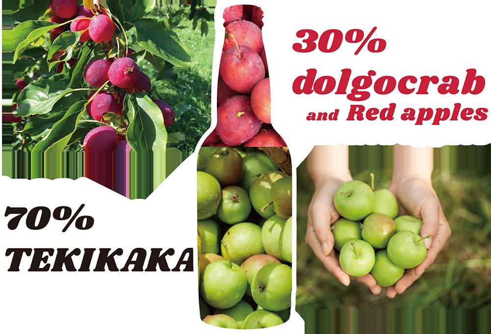 摘果70%、完熟果30%でできているテキカカシードル