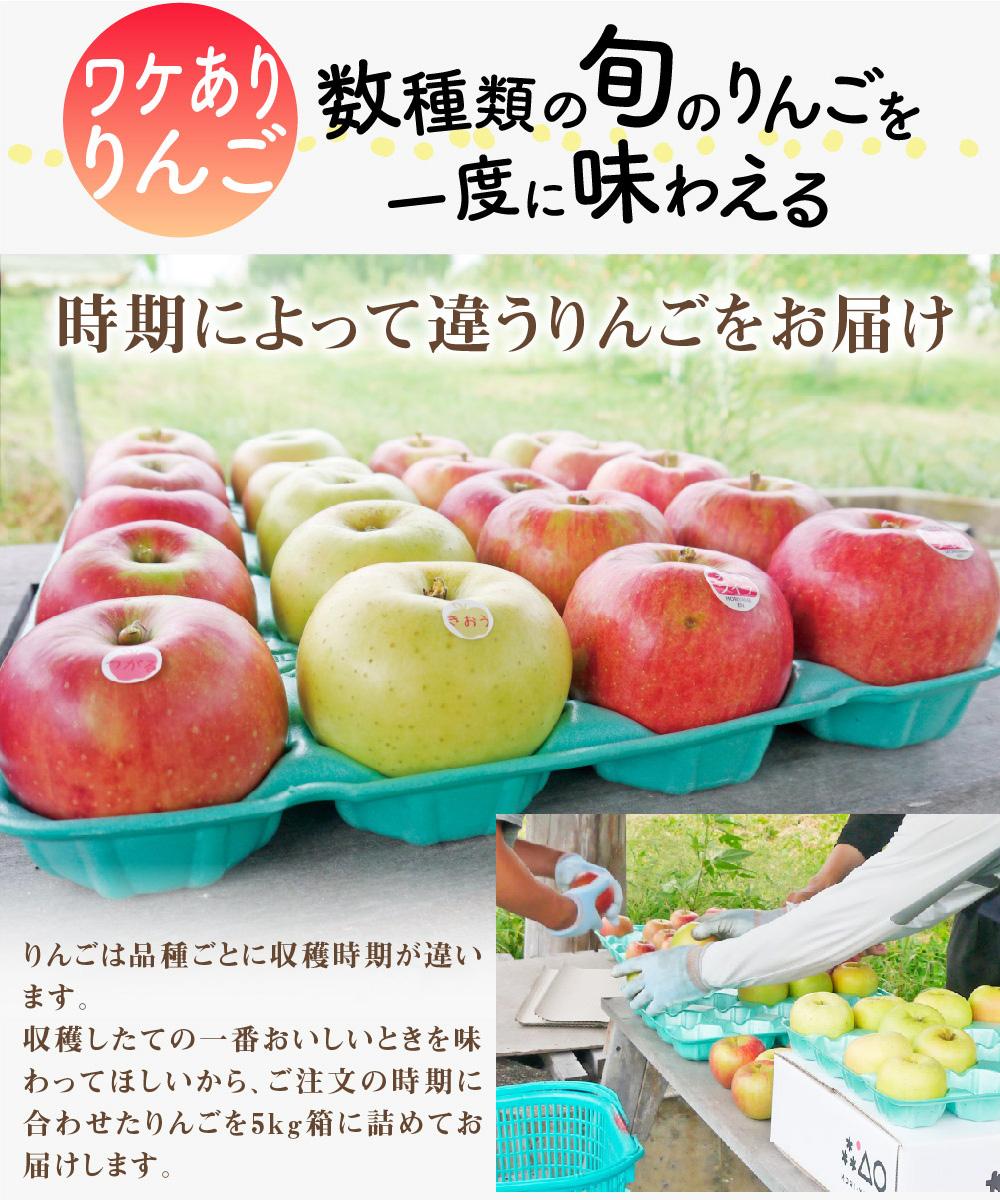 おまかせりんご商品説明1