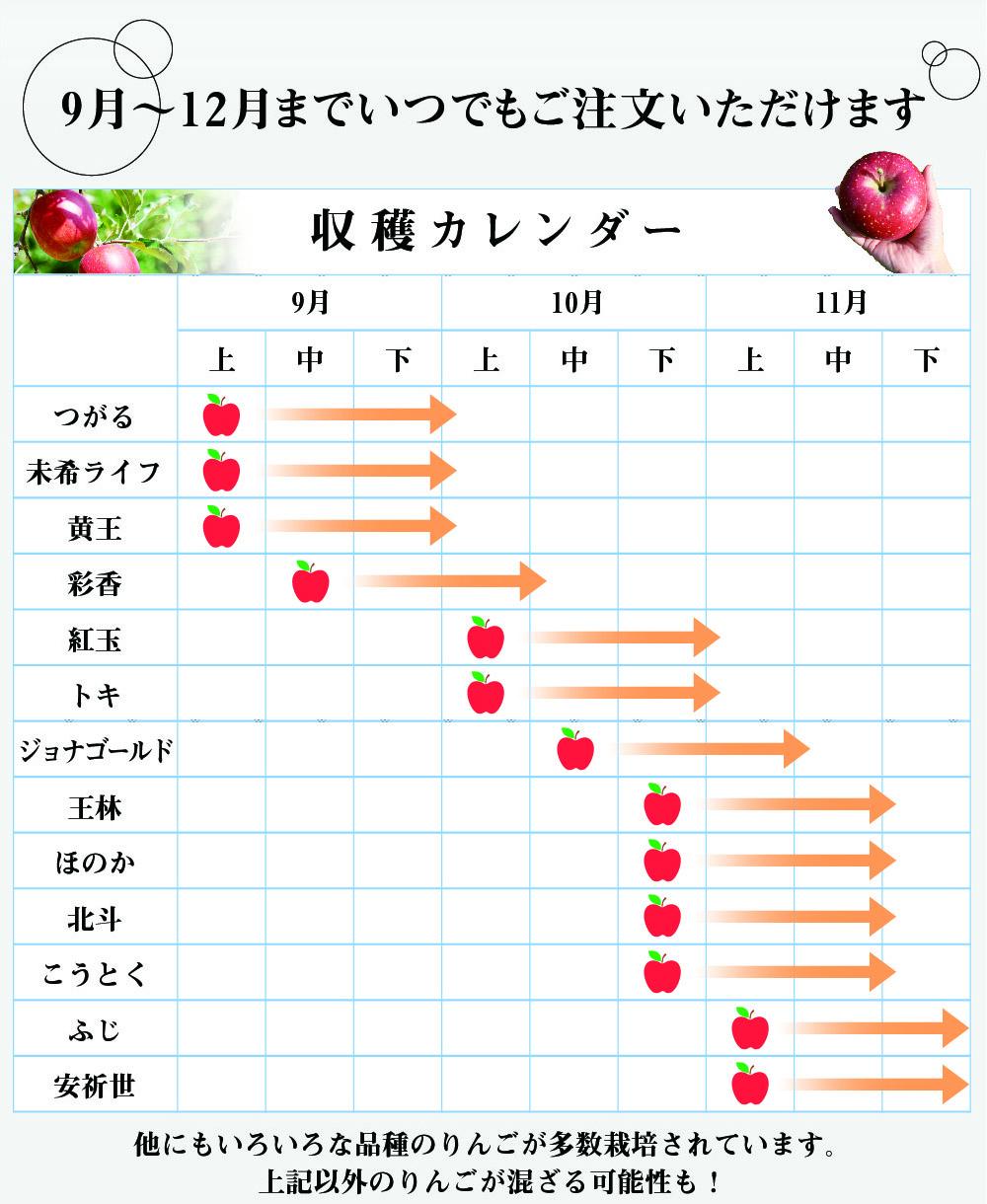 おまかせりんご商品説明2